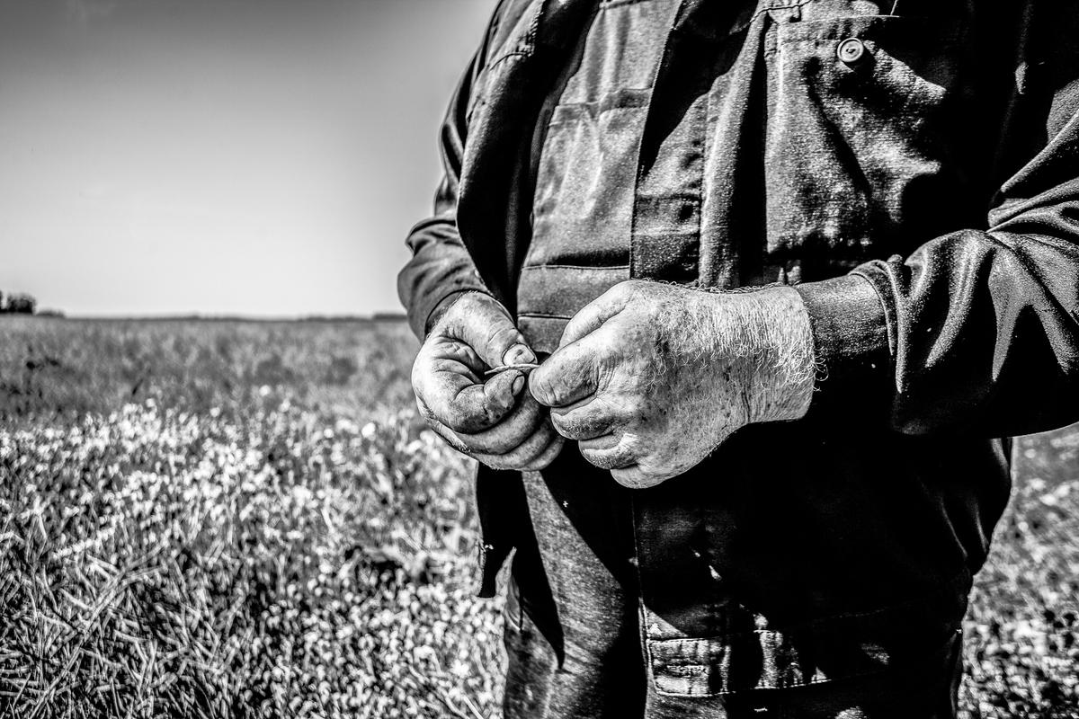 Поздравляем с Днём работника сельского хозяйства и перерабатывающей промышленности